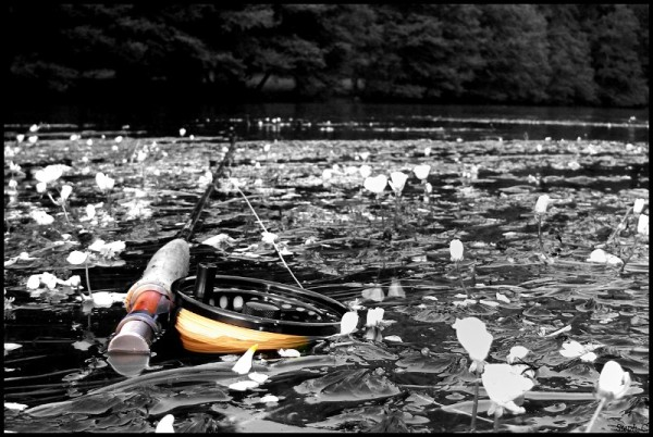 en action de pêche (11)-border