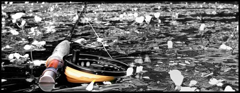 en action de pêche (11)