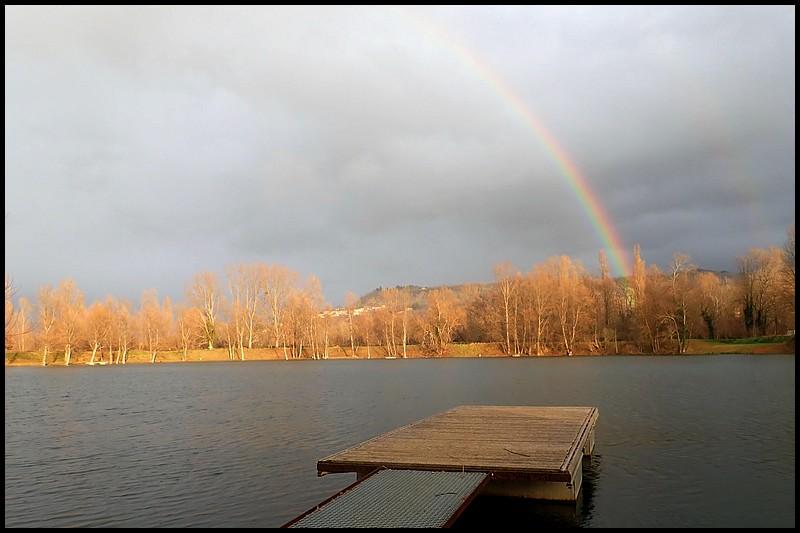 OLIVE DUN classique rivière lac pêche à la mouche sèche mouches Rainbow Brown Trout